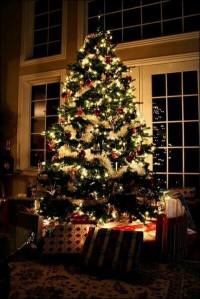 christmas-christmas-tree-holiday-love-Favim.com-2292004