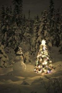 christmas-christmas-tree-noel-snowman-Favim.com-2200405