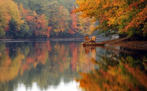 Favim.com-autumn-autumn-leaves-awesome-beautiful-place-675423