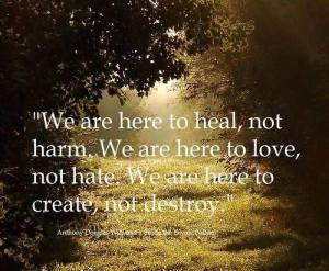 destroy-dream-hate-inspire-Favim.com-1723135