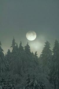 beautiful-moon-nature-picture-Favim.com-3876961