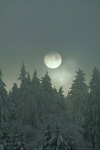 beautiful-moon-nature-picture-Favim.com-3876961