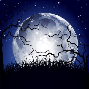 bigstock-vector-night-background-with-t-29201066-440x440