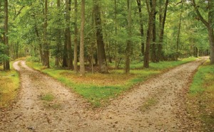 Well Here We Are… Choice-crossroads-forest-green-life-favim-com-180362